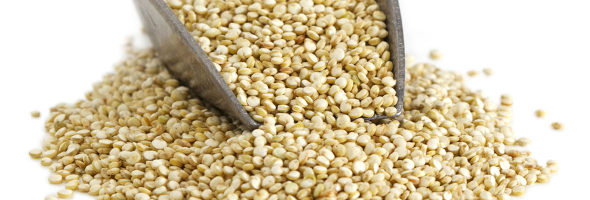 Trendy vs traditional grains – which are more nutritious?